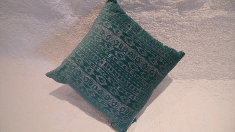Aqua cushion - $30 (2 available)
